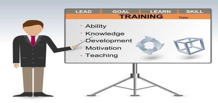Employee Mentoring Tools