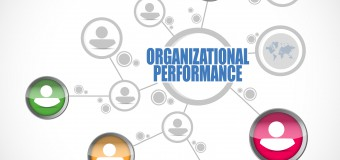 How Do You Drive Organisational Performance?
