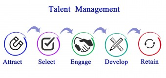 Use a Talent Management System to Develop Teams That Give Results